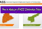 how to apply for epass fresh renewal scholarships online